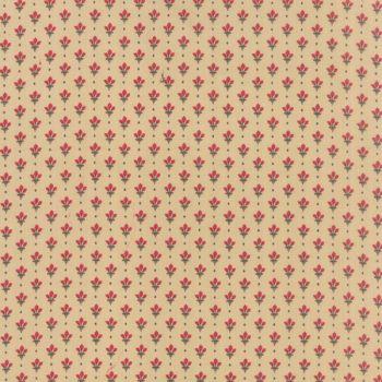 Petite Prints Deux 13750-12
