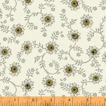 Aster 35168-3