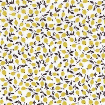 3636005-D- Yellow